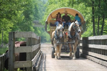 Ole Covered Wagon Tours on Rail Trail