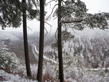 Visit Potter-Tioga snow covered mountain