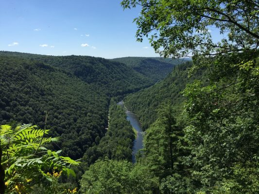 West Rim Trail in Visit Potter-Tioga