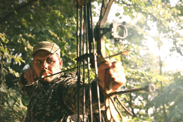 Visit Potter-Tioga Bow Hunting