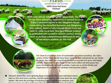 Triple Divide Farms brochure