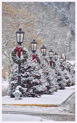 Winter Holiday Scene in Visit Potter-Tioga