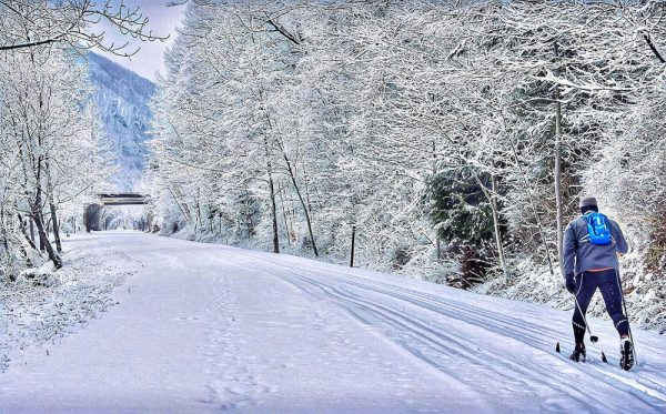 Skiing on the rail trail in Potter-Tioga County