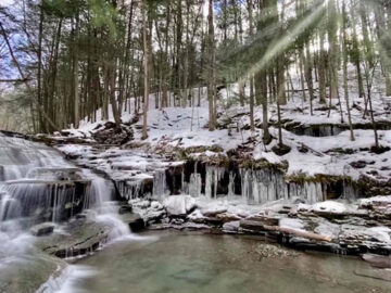 Visit Potter Tioga Snow-Covered Landscapes