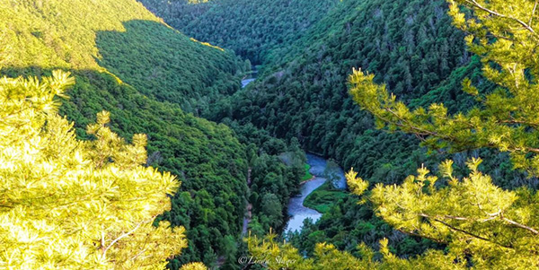 Bask in the Beauty of Spring and Visit Potter and Tioga Counties